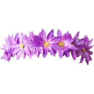 Purple Daisy Flower Crownsoverlaypurple