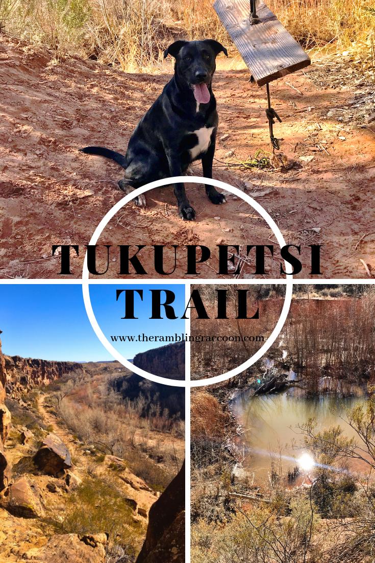 Tukupetsi Trailhead Utah Hikes Scenic Scenic Views