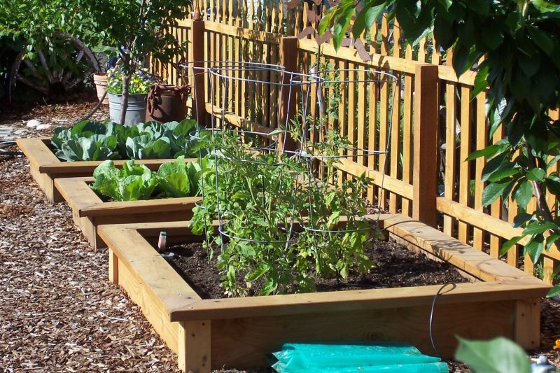 Merveilleux Raised Garden Beds   Good Idea To Keep Things Organized | Eating .
