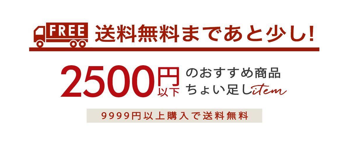 dyx 送料無料まであと少し 2500円以下のおすすめ商品ちょい足しitem9999円以上購入で送料無料 おすすめ 無料