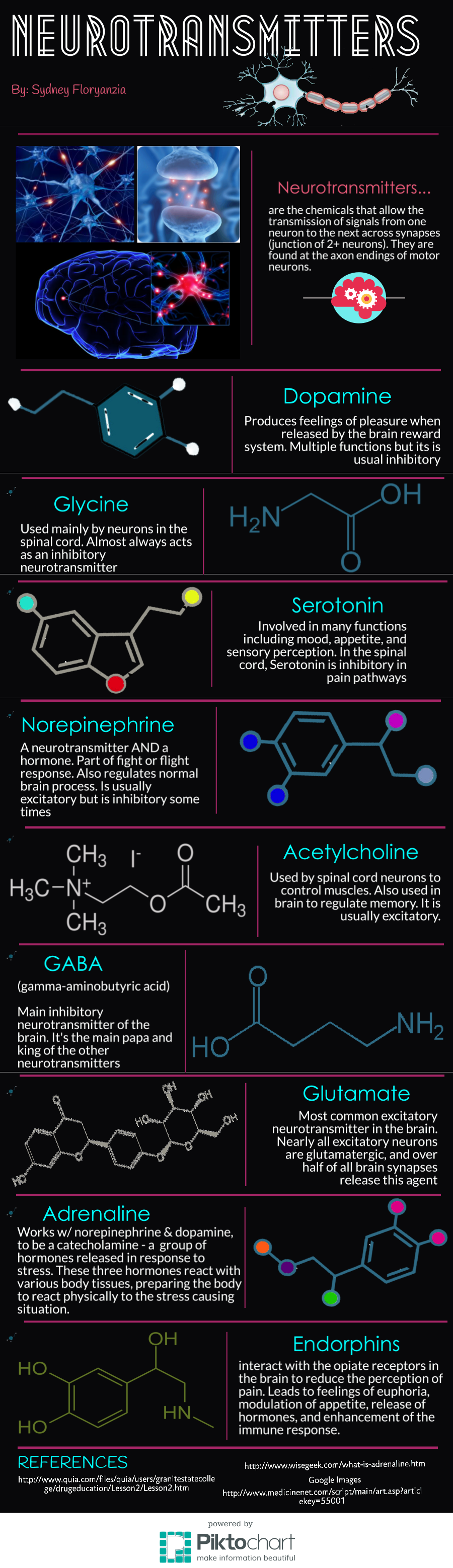 Infographic on neurotransmitters in the brain.