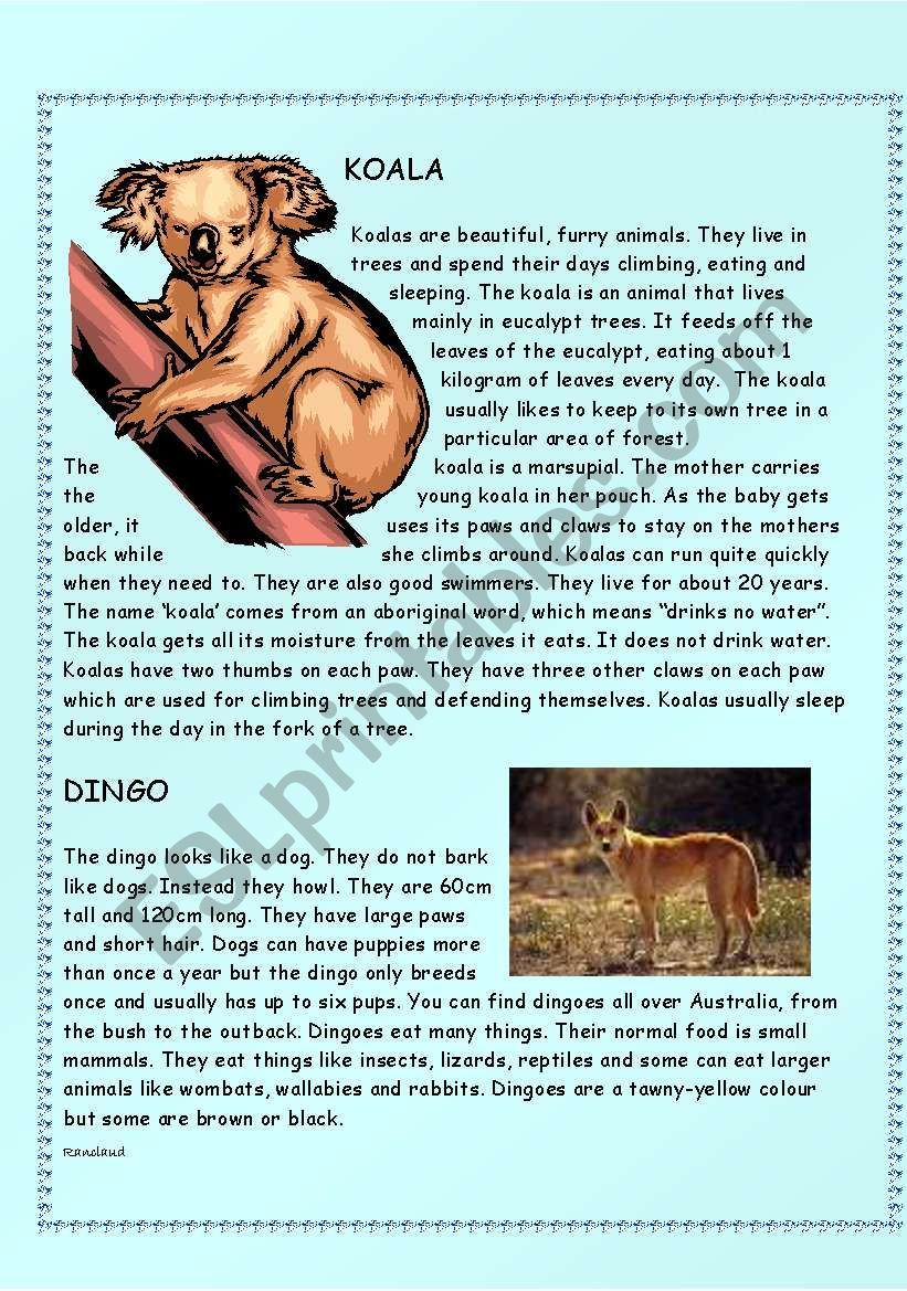 Amazing Australian Animals Intermediate level (( 14
