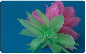 Como Hacer Flores Con Papel Crepe Crepe Paper Flowers Crepe - Flores-de-papel-crepe