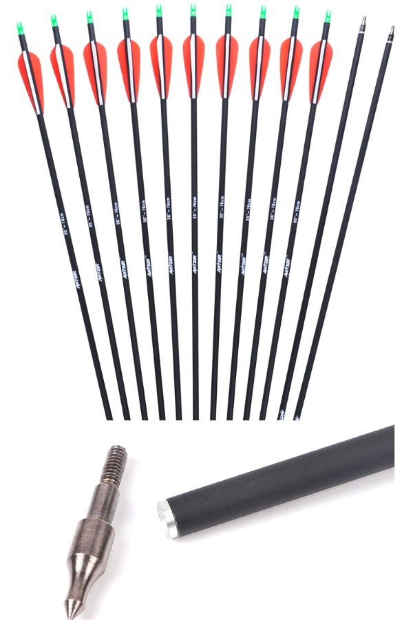 ANTSIR Outdoors Carbon 30-Inch Removable Arrows  One of the best