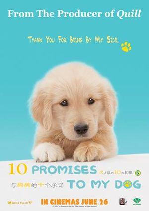 10 Promises To My Dog 2008 A Movie That Talks About The