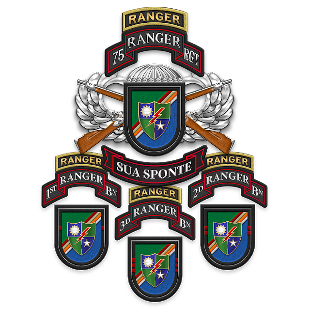 5d17bc35de907 Military Insignia 3D   75th Ranger Regiment by Serge Averbukh ...