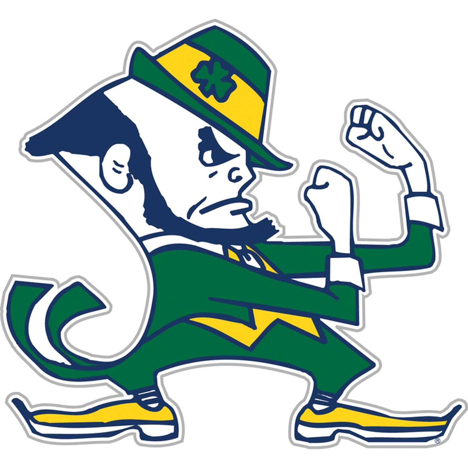 Image result for Notre Dame team logo