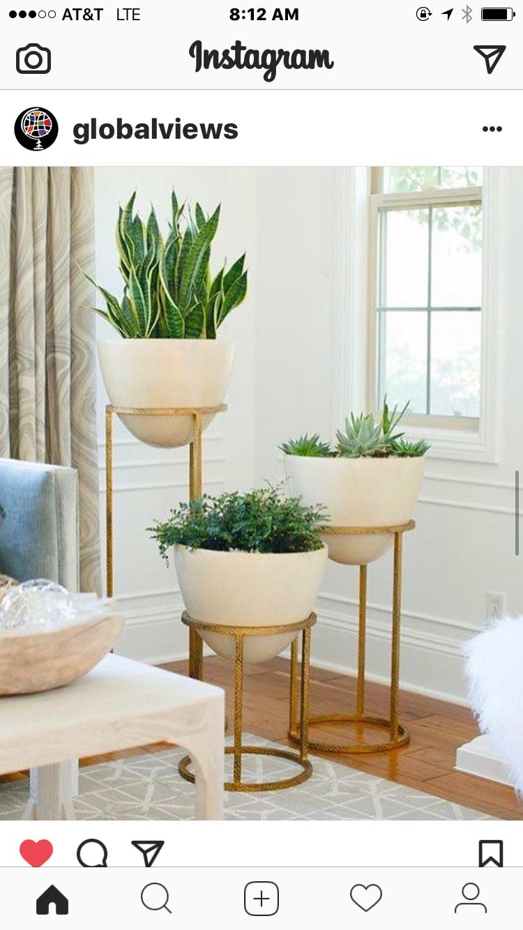 Pin von Laura Roberts Interiors auf Plants and Planters   Pinterest