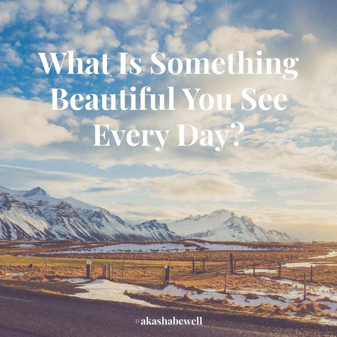 Find the beauty in all that is around