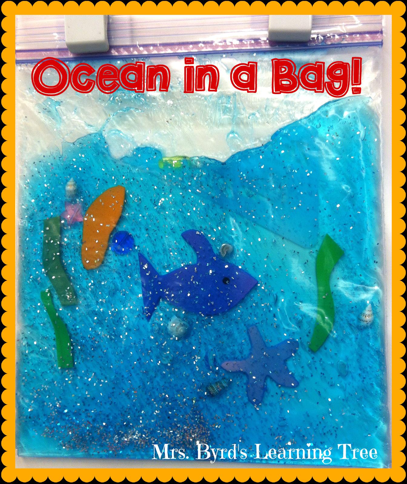 Ocean In A Bag