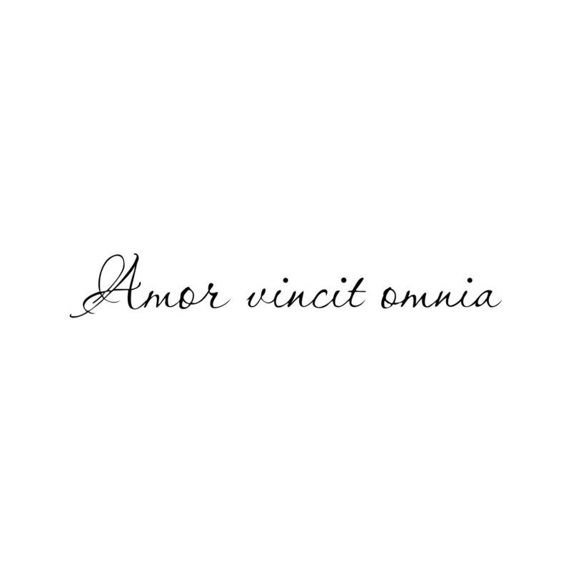 Amor Vincit Omnia Latin Calligraphy Cursive Fake Temporary