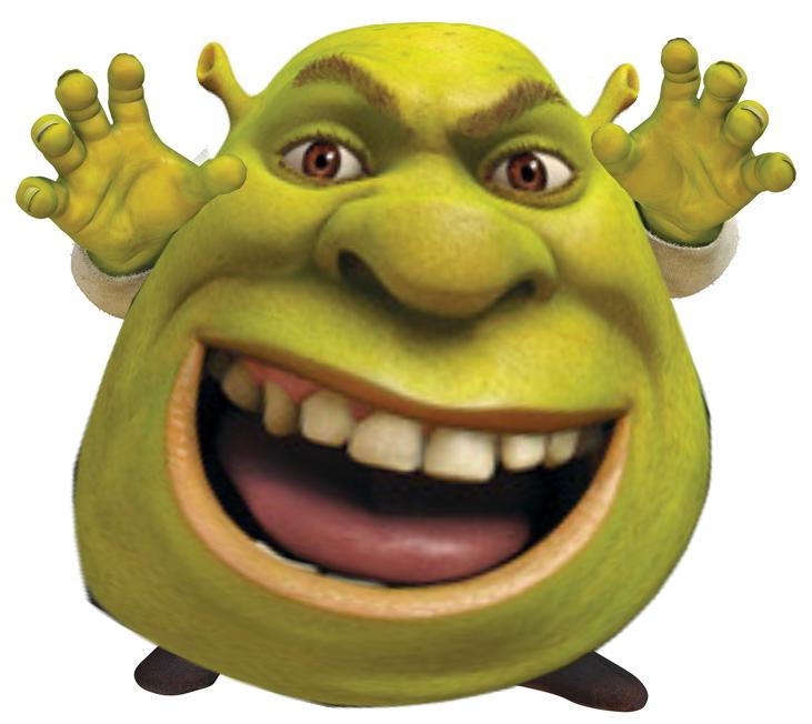 Shrek Google Sogning Shrek Memes Shrek Funny Memes