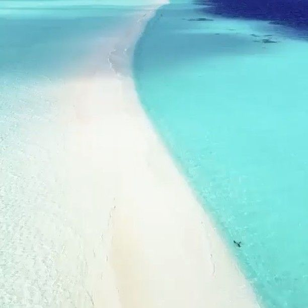 Where I'm Tryna Be 💸🌴 #Maldives
