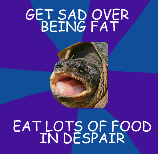 Disappointed turtle meme - photo#15