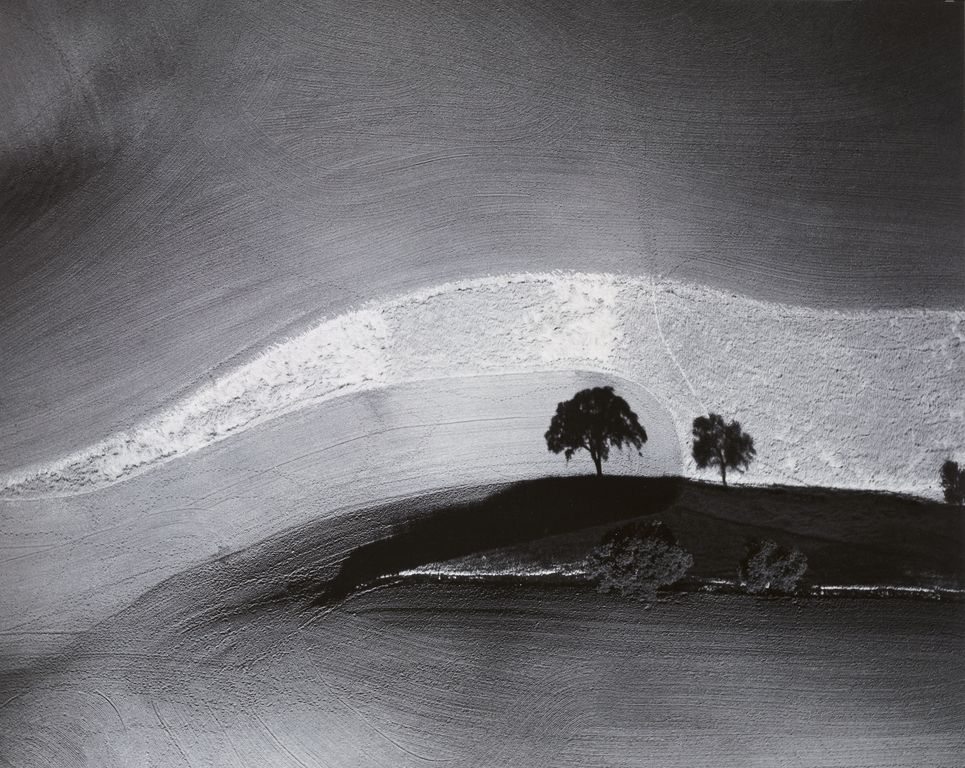Two Trees on Hill with Shadows, Paso Robles, California 1974 by William A. Garnett