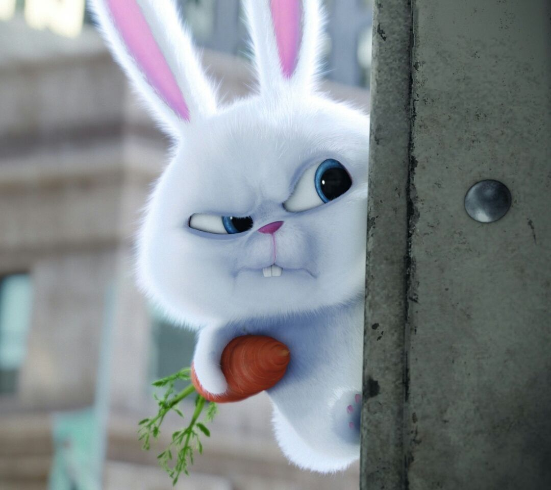Pin by XxLiem on nvm Secret life of pets, Baby bunnies