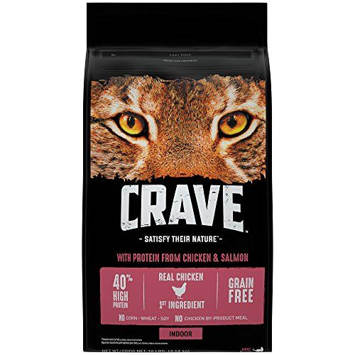 Crave Indoor Grain Free Dry Cat Food With Protein From Chickenandsalmon Bag 10 Lb Check Out The Image By Visiting Th Dry Cat Food Cat Food Cat Food Storage