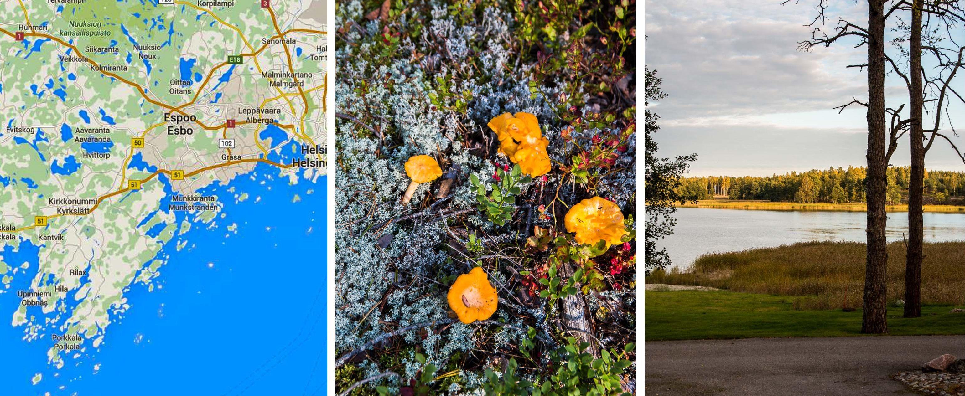 Suomi kulinaarinen – Finnland kulinarisch (Teil 1) | Dinner um Acht