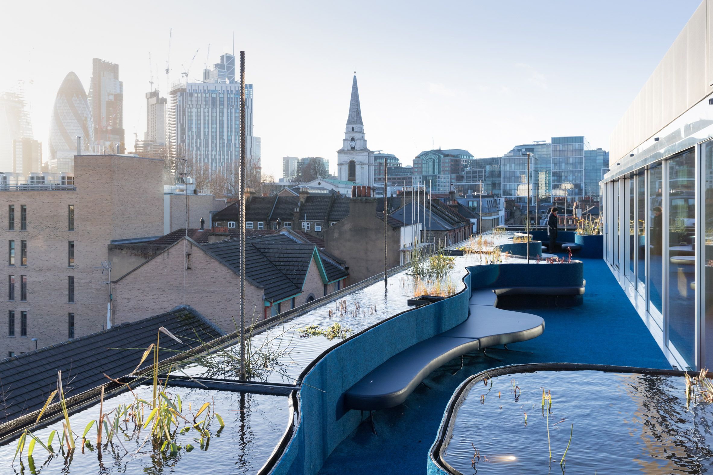 Selgascano Adds Roof Extension With Pools And Plants To Second Home Offices In London London Buildings Roof Architecture Pergola Plans