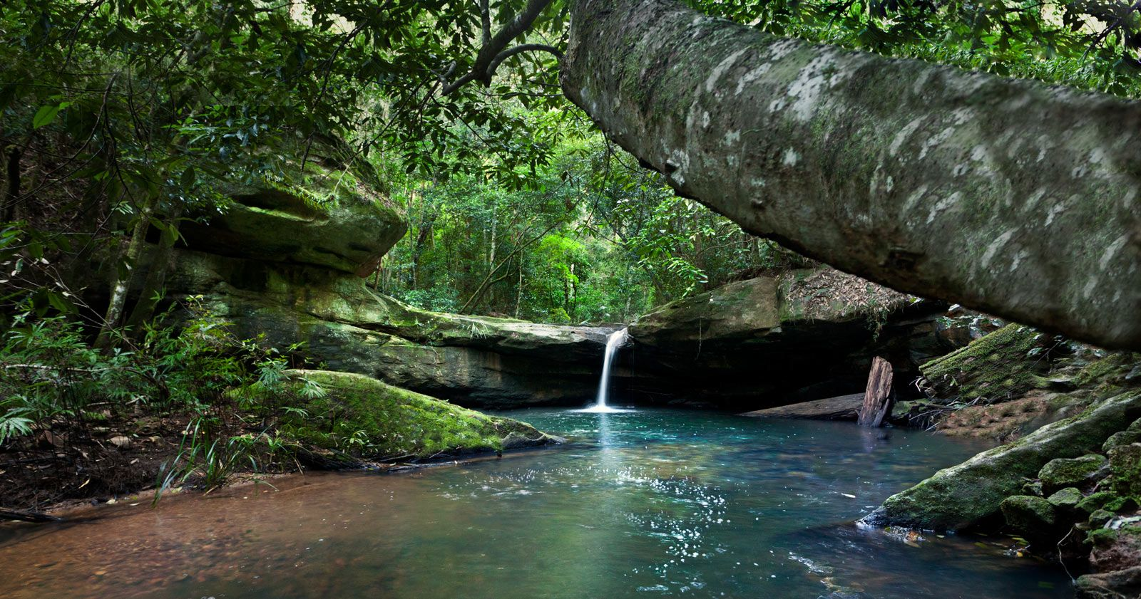australian landscape pictures | ... waterfall-mid north coast ...
