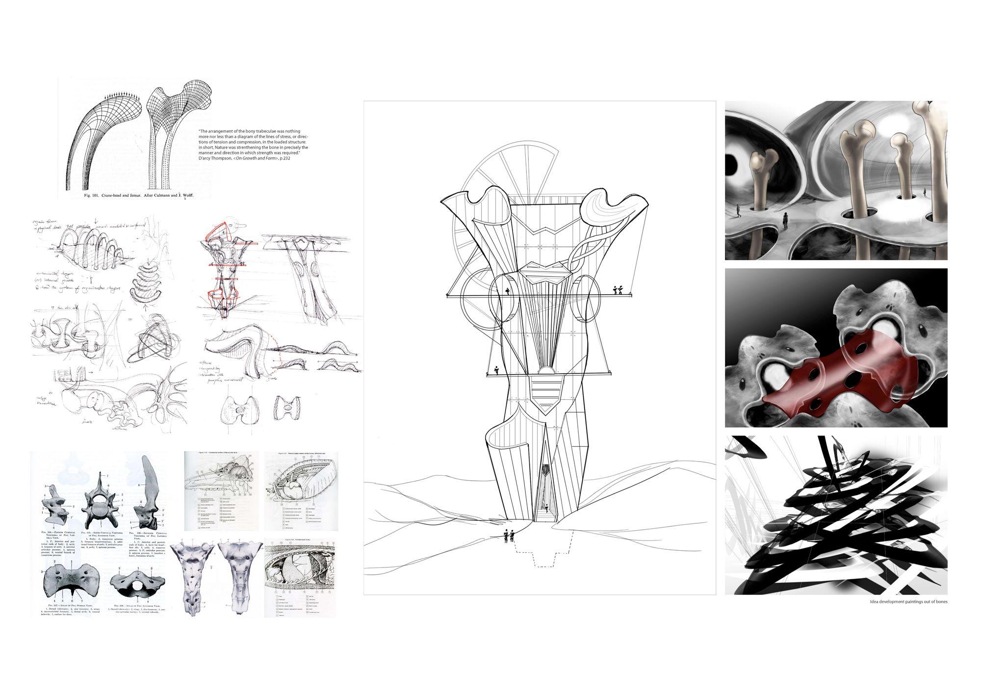 Heonrk 1 Idea Development Drawing Out Of Bones