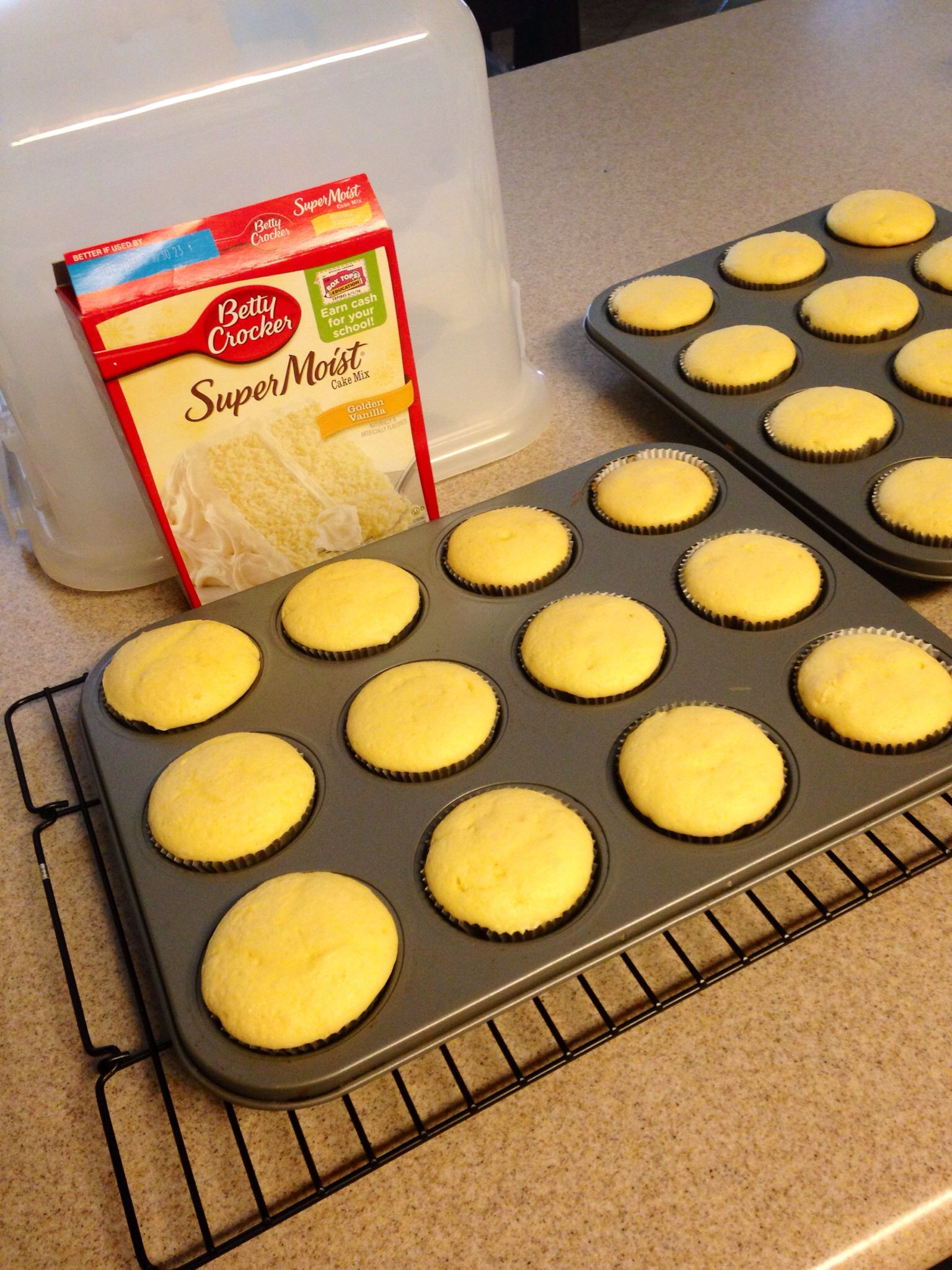 What Can You Substitute Oil For In Cake Mix
