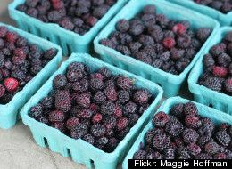What S The Difference Blackberry Vs Black Raspberry Black Raspberry Blackberry Nutrition Raspberry