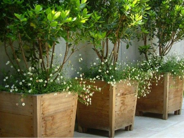 Fine looking wooden large container pots outside spaces for Tall planters for privacy