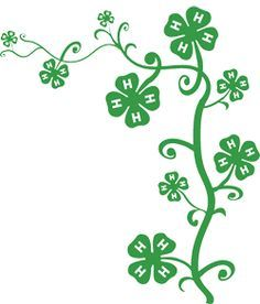 4h clover template four leaf clover vector clip art vector