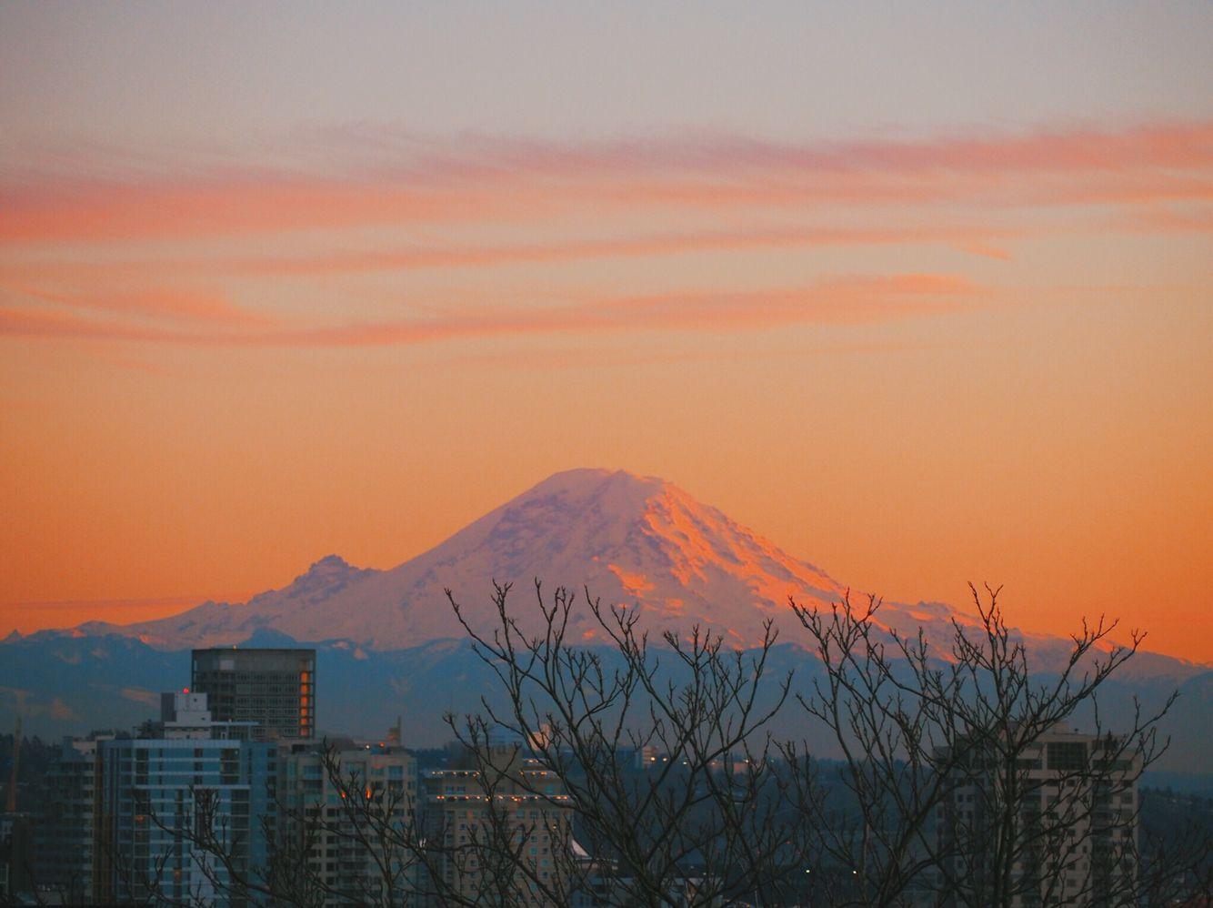 Mt. Rainier 🗻