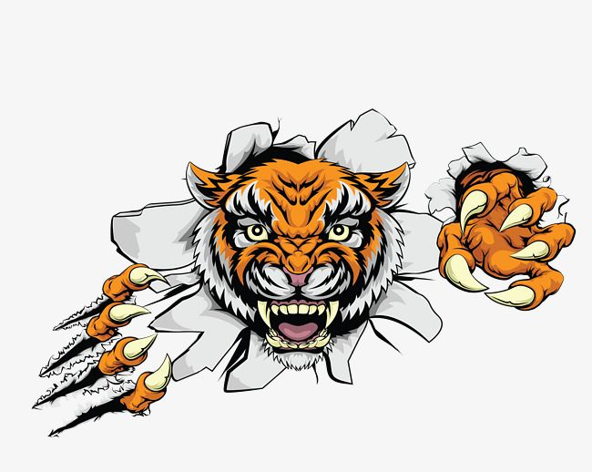 Vector Color Ferocious Tiger Head Stickers Color Clipart Tiger Clipart Head Clipart Png Transparent Clipart Image And Psd File For Free Download Tiger Attack Pet Tiger Tiger Images