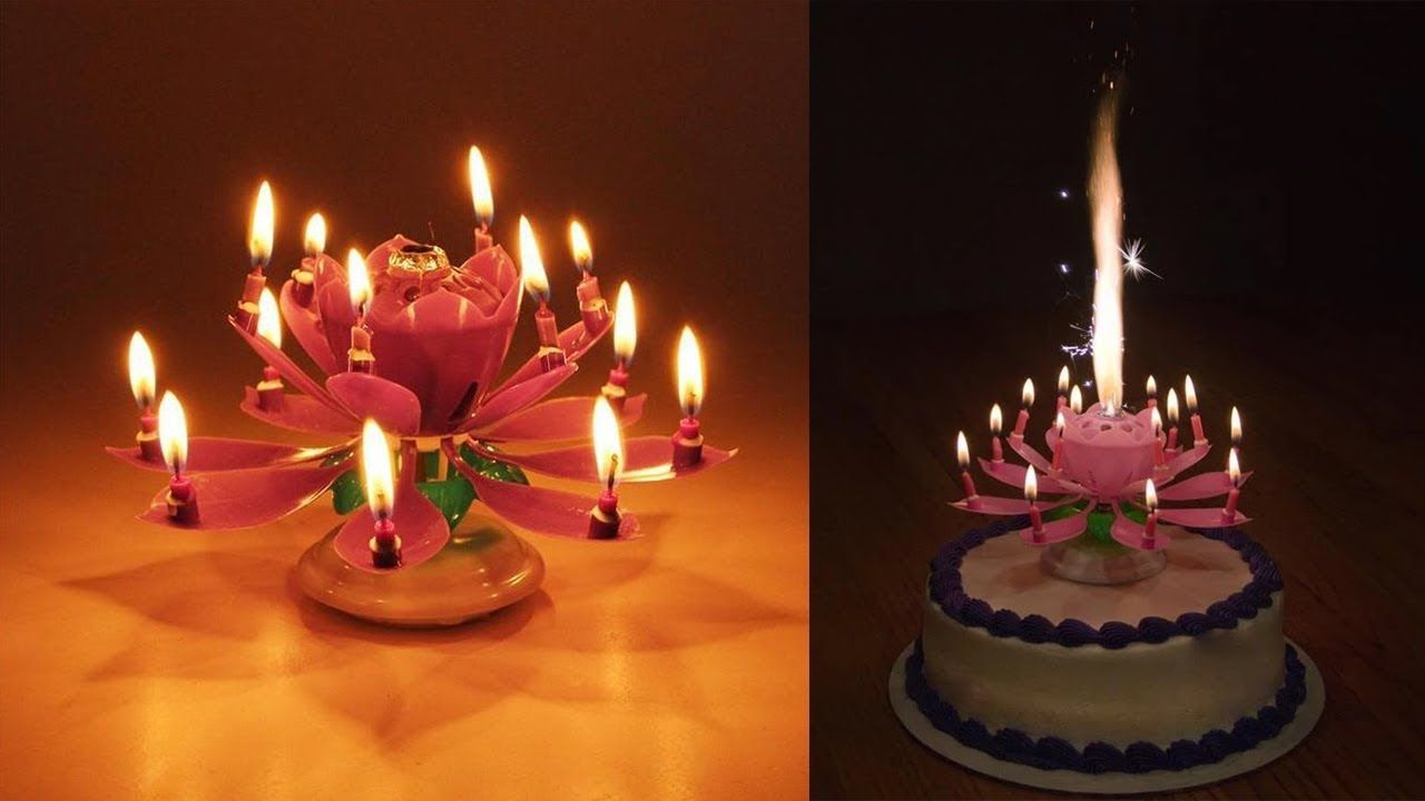 Best Blooming Musical Candle Of 2019 Birthday Candles Candles Flower Candle