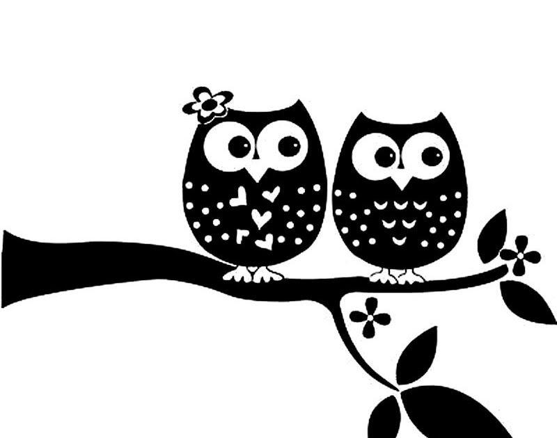 14 Gambar Burung Hantu Hitam Putih Burung Hantu Tito Alba Atau Serak Jawa Adalah Jenis Burung Hantu Yang Memiliki Ukuran Tub Gambar Burung Hantu Burung Hantu