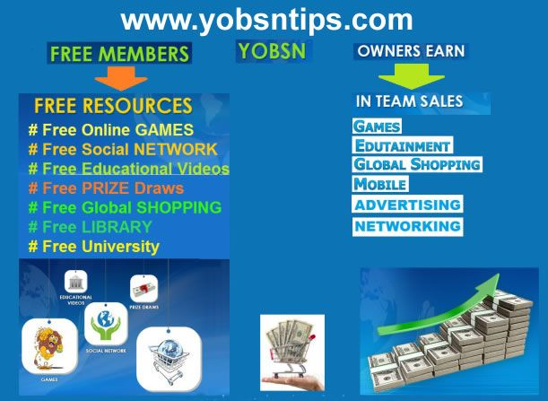 16 Ways to Make Money In YOBSN