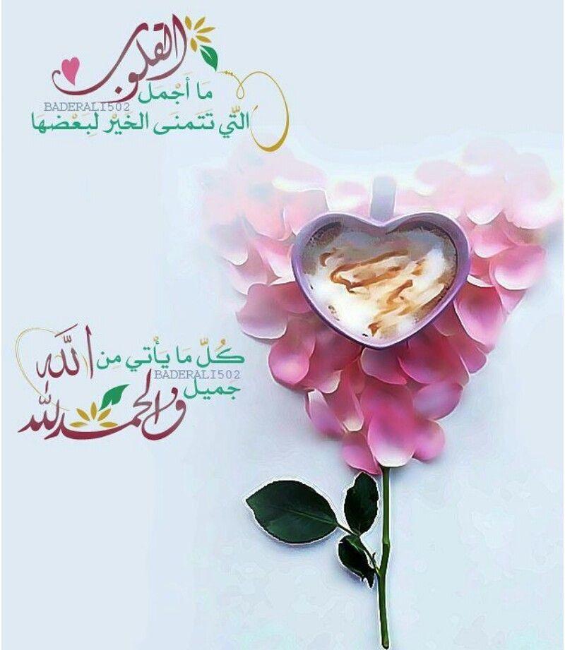 ما أجمل القلوب التي تتمني الخير لبعضها Islamic Love Quotes Feelings Quotes Prayers