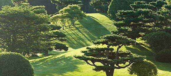 Elizabeth Hubert Mallott Japanese Garden at Chicago Botanic Garden. Visit http://najga.org/gardens for map location.