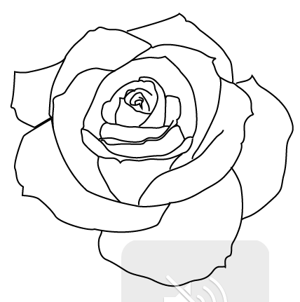 Pin By Kt Fata On Ink Rose Outline Drawing Rose Outline Rose Outline Tattoo