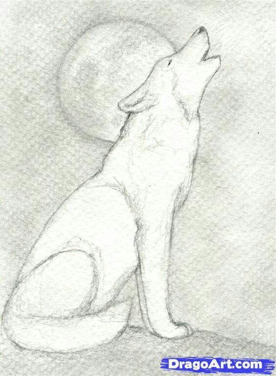 Pin De Gabriela Gherciu En Tattoo Lobos Para Dibujar Como Dibujar Un Lobo Lobo Aullando