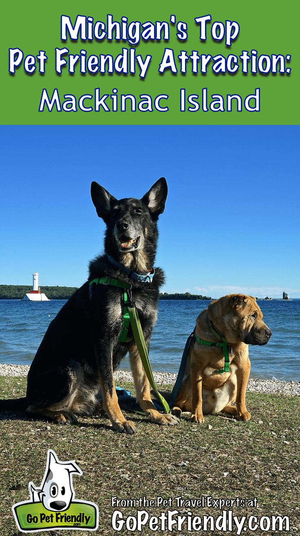 Michigan S Top Pet Friendly Attraction Mackinac Island Mackinac Island Michigan Road Trip Mackinac