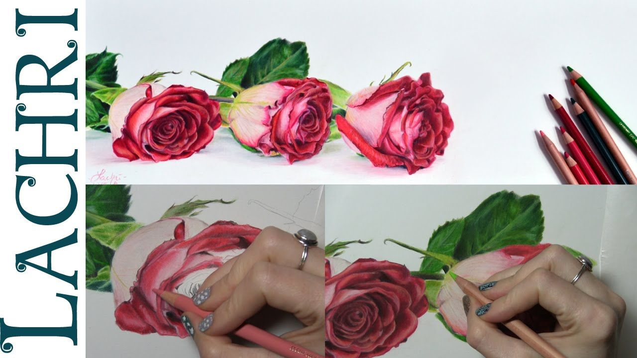 Tips on how to draw a rose in colored pencil w/ Lachri ...