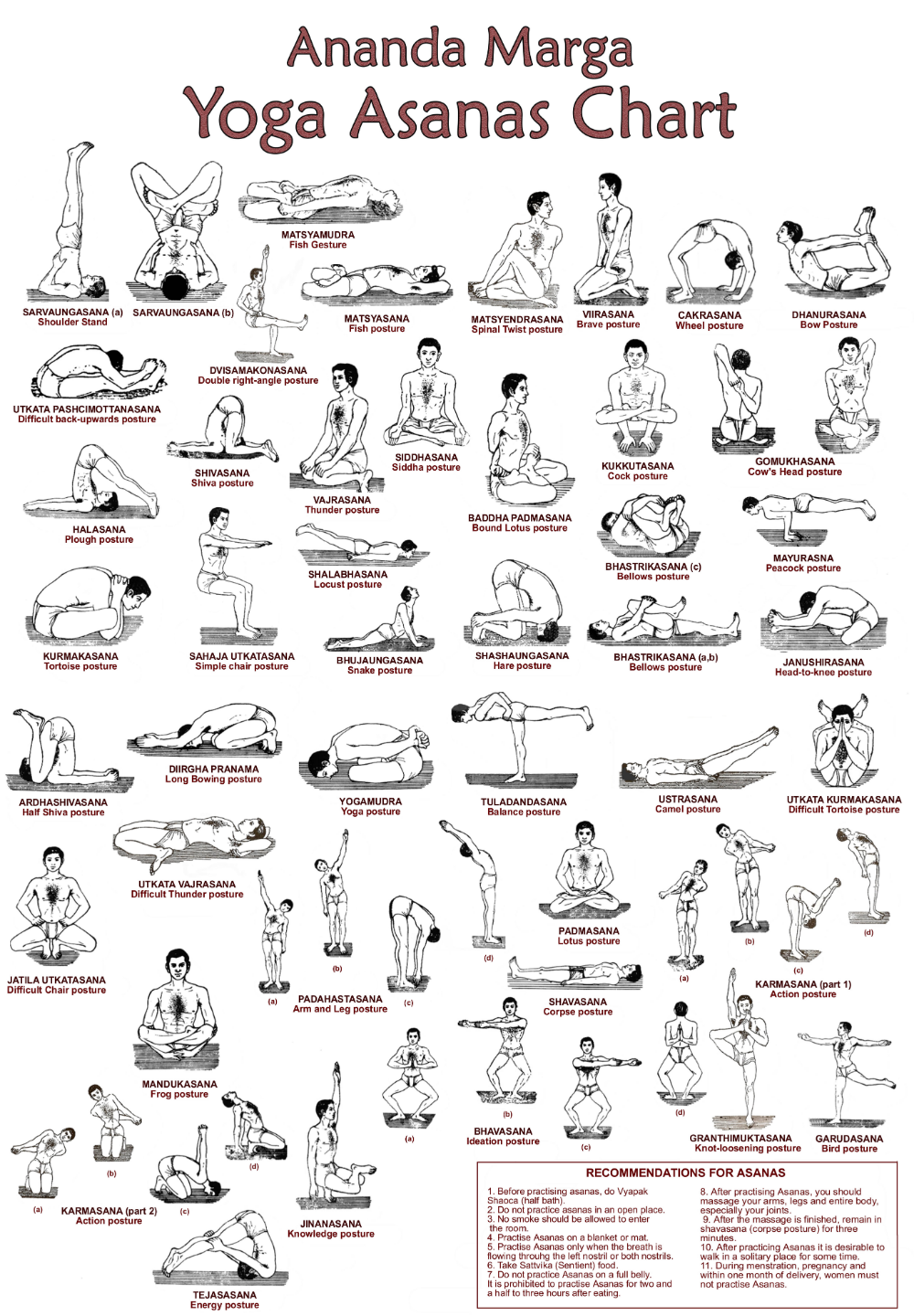 24++ What are the different asanas in yoga trends