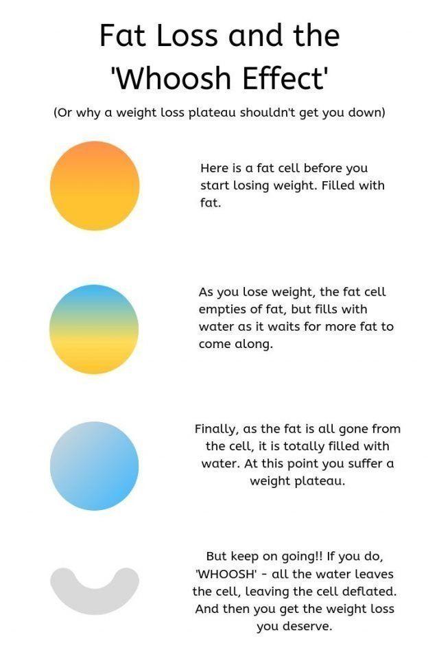 Tired Month Diet Plan #fitness #WeightLossProgramsWorkoutRoutines
