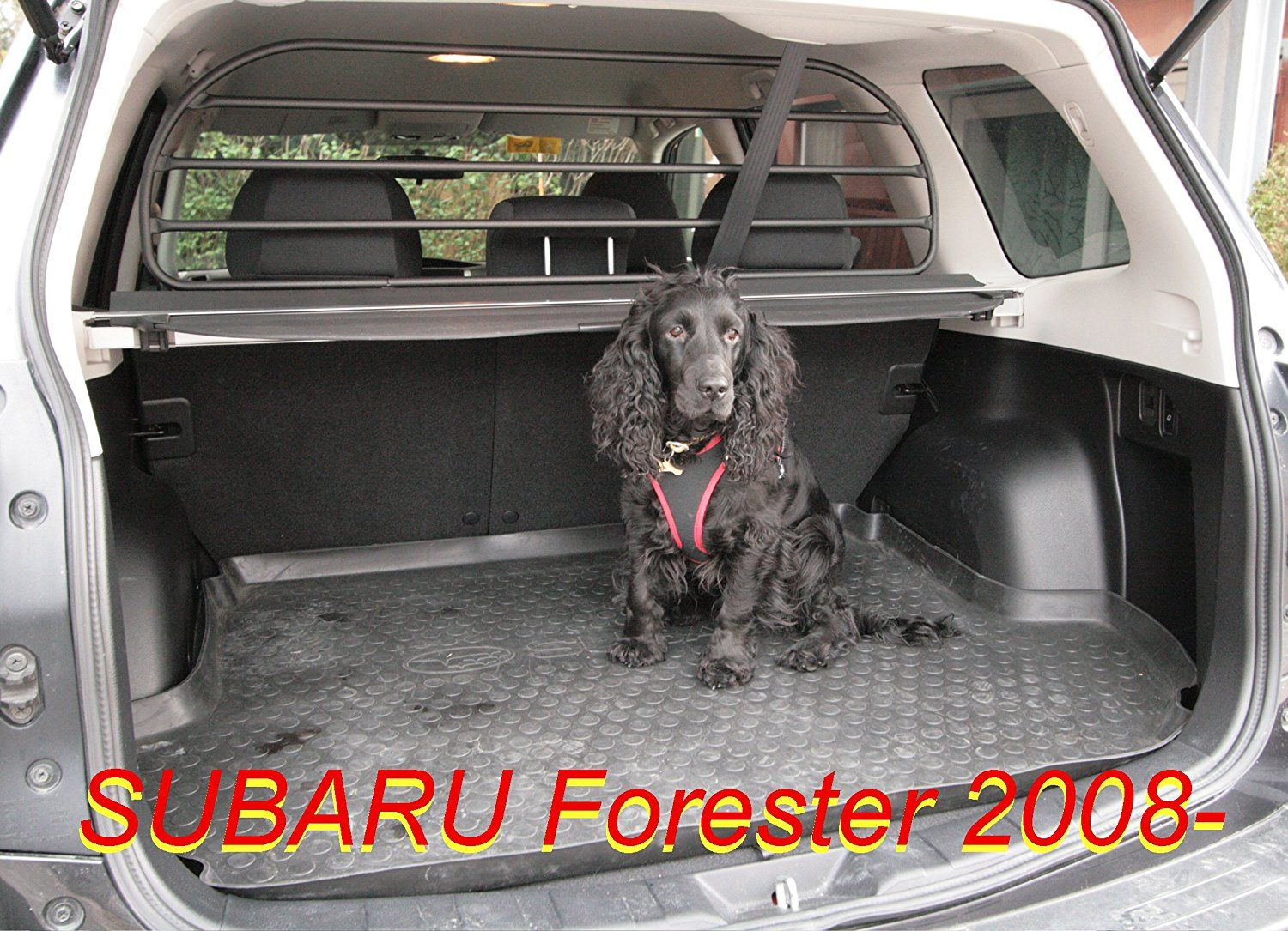 dog guard pet barrier net and screen rda65hbg l for subaru forester