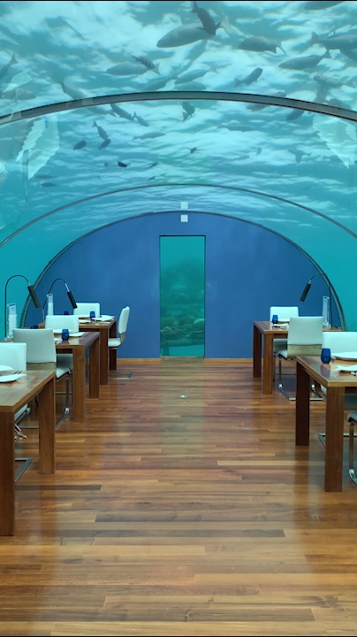 Maldives Underwater Restaurant: Bucket Lists