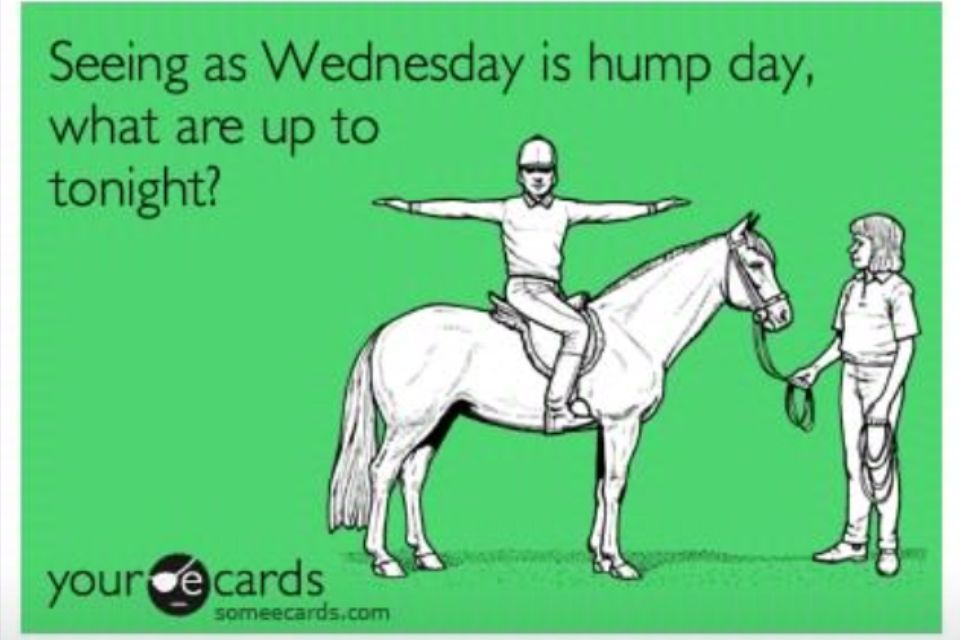 wednesday hump day ecards