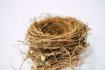 Close Up Empty Birds Nest On White Snow Background Selective Focus Buy This Stock Photo And Explore Similar Images At Adobe Stock Stock Photos Image Birds