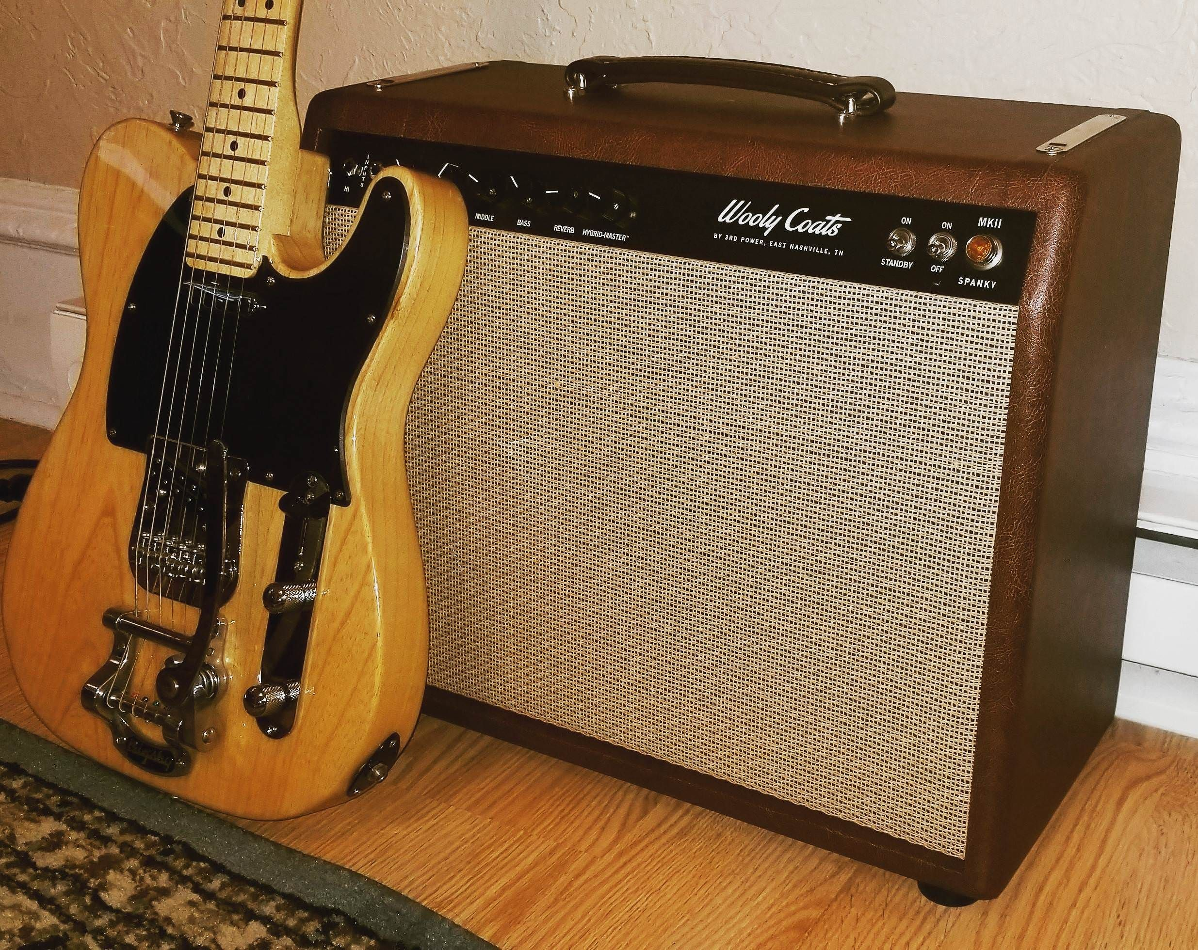 New Amp Day Wooly Coats Spanky Mkii With My Tele Build Cool Guitar On Pinterest Steampunk Fender Telecaster And Epiphone