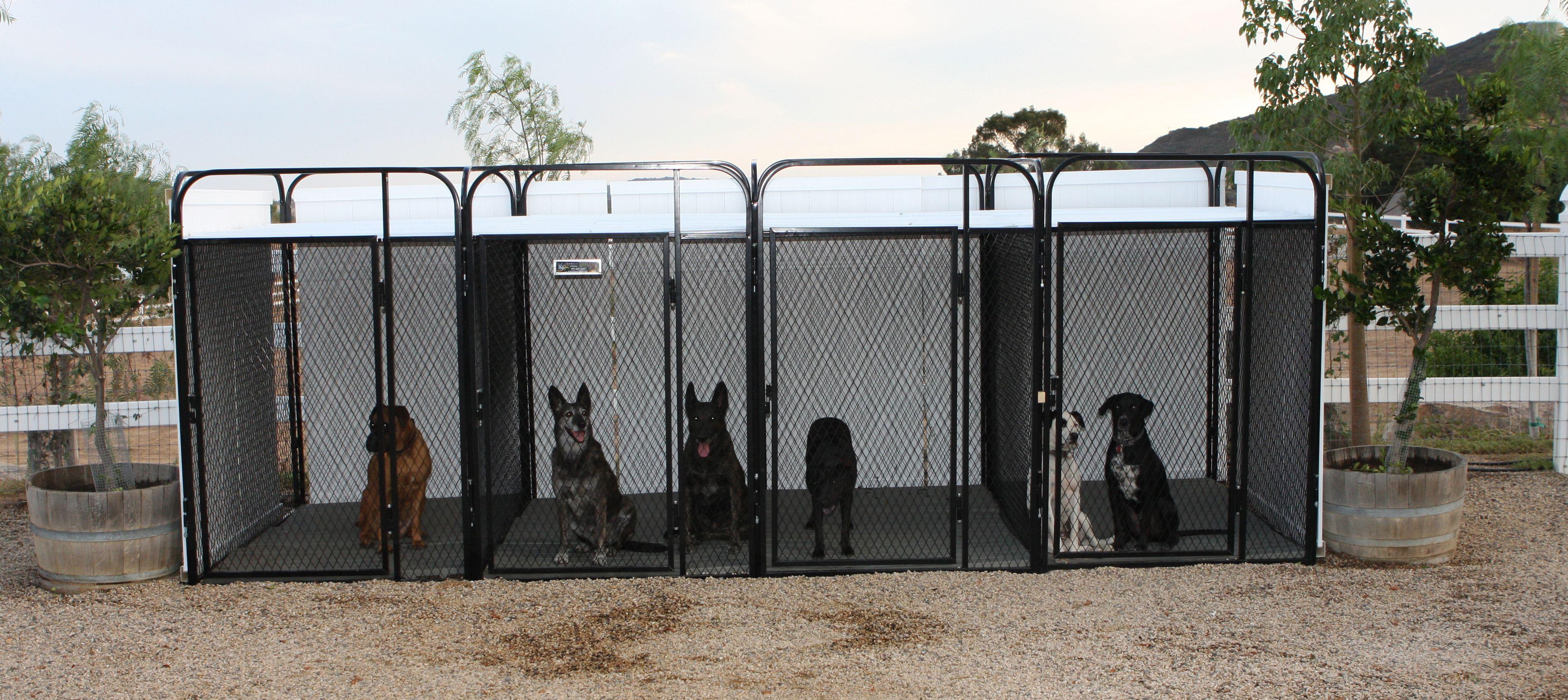 Dog Kennels For Sale Kennel Cages Canine Kennels Akc Kennels Dog Runs K9 Kennel Home Dog Kennel Dog Pens Dog Runs