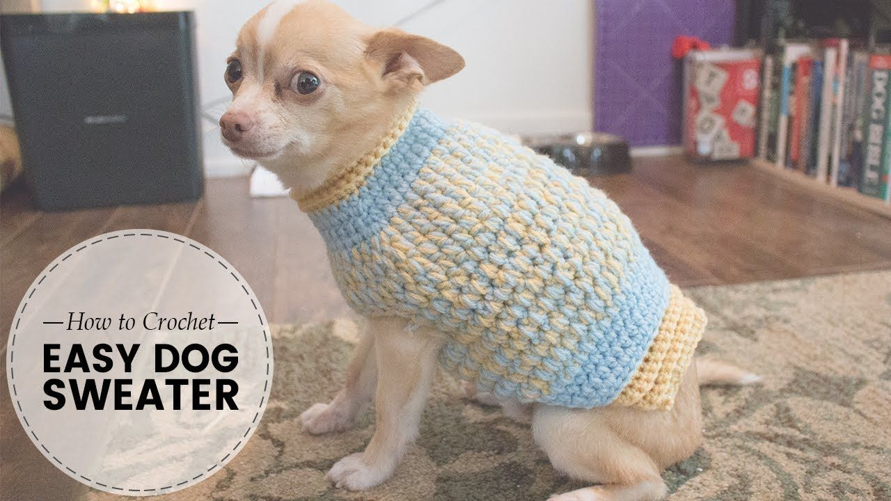 Easy Crochet Dog Sweater Part 2 Of 2 Last Minute Laura Youtube