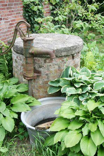 Pin By Silver And Grey On Vintage Garden Hosta Gärten Wasserpumpe